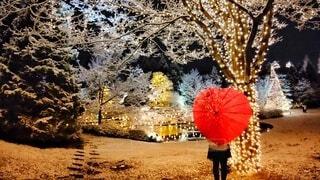 ハートの傘とクリスマス飾りの写真・画像素材[4002650]