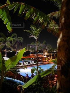 リゾートの夜の写真・画像素材[2419341]