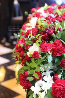 近くの花のアップの写真・画像素材[788140]