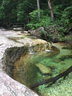 近くに水のプールに大きな岩のアップの写真・画像素材[995454]