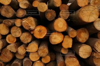 薪の写真・画像素材[995502]