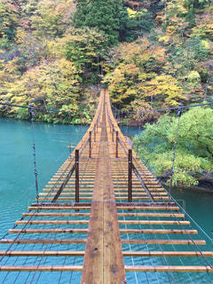 一度は行ってみたい吊り橋の写真・画像素材[1259293]