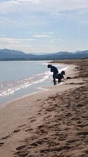 煌めく朝日の中で、砂浜で遊ぶ兄弟の写真・画像素材[2331830]