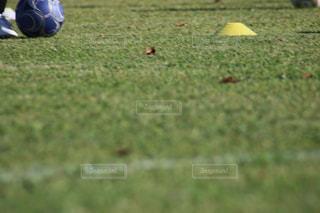 フィールド上のフットボールボールのクローズアップの写真・画像素材[3033035]