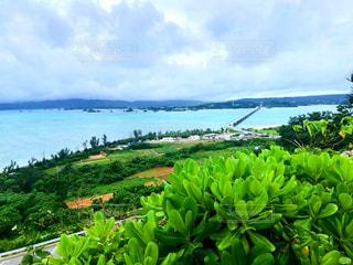 水域のある大きな緑の風景の写真・画像素材[2337342]