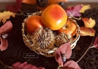 秋の味覚の写真・画像素材[3729538]