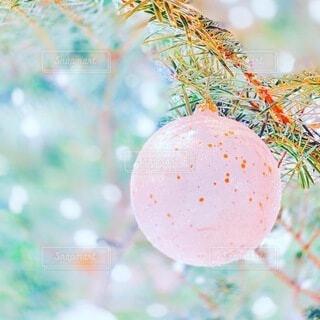 クリスマス飾りの写真・画像素材[3984335]
