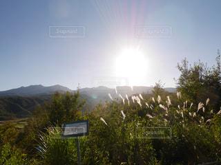自然,風景,空,屋外,太陽,青空,霧,山,景色,光,樹木,旅行,旅,長野,山梨