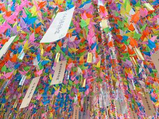カラフルな花の群しの写真・画像素材[2380708]
