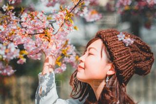 桜花爛漫の写真・画像素材[4333002]