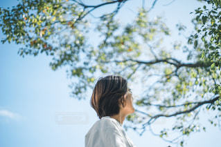 木の前に立っている人の写真・画像素材[2782181]