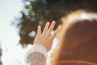 手を閉じるの写真・画像素材[2809083]