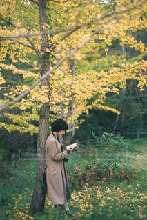 木の隣に立っている人の写真・画像素材[2892961]
