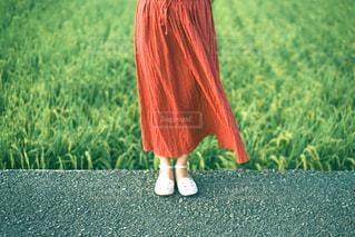 フィールドに立っている赤いドレスを着た人の写真・画像素材[3141888]
