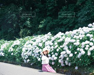 庭にいる人の写真・画像素材[3141912]
