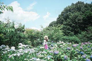 庭に立つ人々のグループの写真・画像素材[3141943]