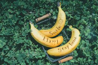 食べ物,朝食,ジュース,果物,野菜,ピクニック,朝,食材,バナナ