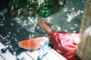食べ物の写真・画像素材[3497572]