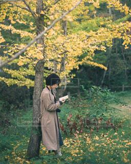 木の隣に立っている男の写真・画像素材[3690554]