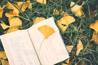 テーブルの上の本の写真・画像素材[3690553]