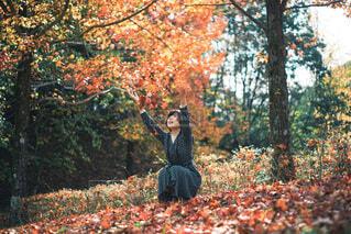 木の隣に立っている人の写真・画像素材[3716506]