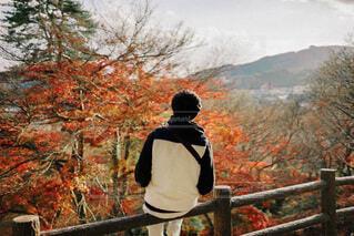 木の隣に立っている男の写真・画像素材[3944748]
