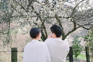 木の隣に立っている男の写真・画像素材[4320650]