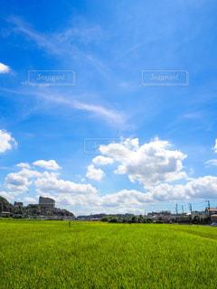 曇り青い空の下の大きな緑の野原の写真・画像素材[2422622]