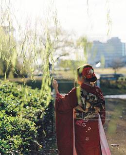 女性,風景,空,屋外,赤,女の子,樹木,人,イベント,和服,お祝い,晴れ着,前撮り,振袖,富山,成人式,20歳,和装,行事,環水公園,成人の日,赤い振袖