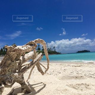 浜辺の人々のグループの写真・画像素材[2352393]