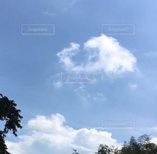 おーい雲の写真・画像素材[2411682]