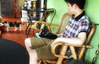 ねこカフェでくつろぐ2匹のねこに癒されていますの写真・画像素材[2419443]