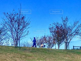 ジョギングする人の写真・画像素材[2826132]