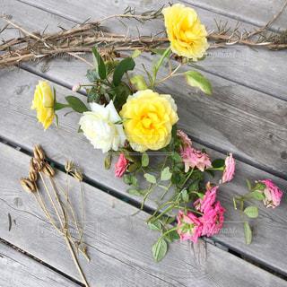 花のクローズアップの写真・画像素材[3032137]