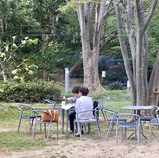 ピクニックテーブルの上に座っている芝生の椅子のグループの写真・画像素材[3096414]