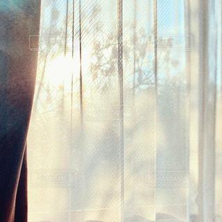 窓の前に立っている人の写真・画像素材[3315885]