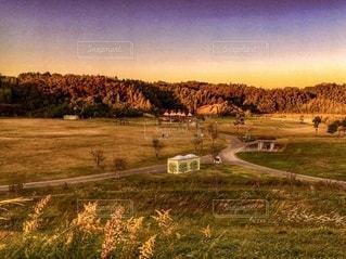 背景に木々のある大きな緑のフィールドの写真・画像素材[3395296]