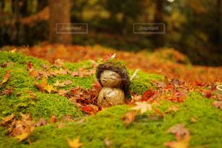 小さな秋のお地蔵さんの写真・画像素材[2513262]