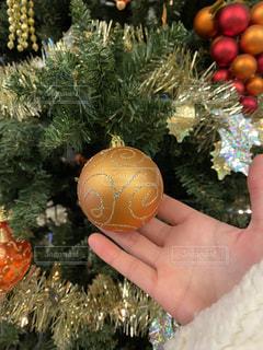 クリスマスツリーの写真・画像素材[2817389]