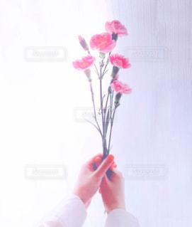 花を持っている人の写真・画像素材[3196352]