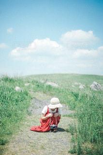 夏空の写真・画像素材[2419664]
