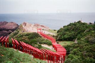 稲荷神社の写真・画像素材[2930054]