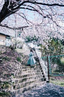春の写真・画像素材[3104936]