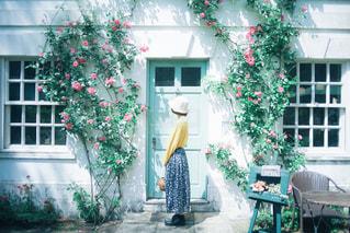 春の壁の写真・画像素材[3104941]