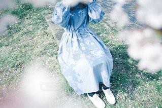 桜のワンピースの写真・画像素材[3104937]