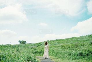 草原の写真・画像素材[3142392]