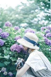 紫陽花と女の子の写真・画像素材[3376908]
