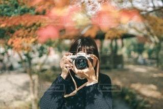 秋の写真・画像素材[3378126]