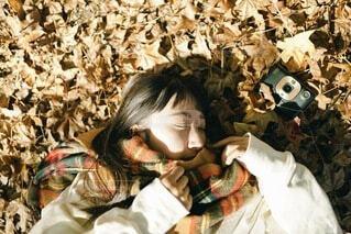 秋色の写真・画像素材[3727720]