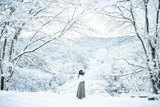 冬の思い出の写真・画像素材[4047411]